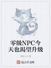 零級NPC今天也渴望升級