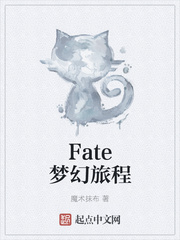 Fate夢幻旅程txt下載