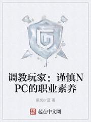 調教玩家︰謹慎NPC的職業素養